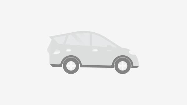 Peugeot 208 avec GPS